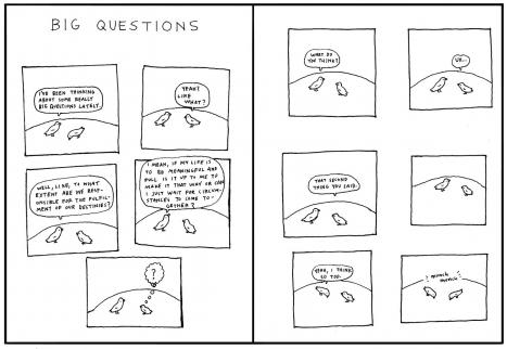 Big Questions de Anders Nilsen
